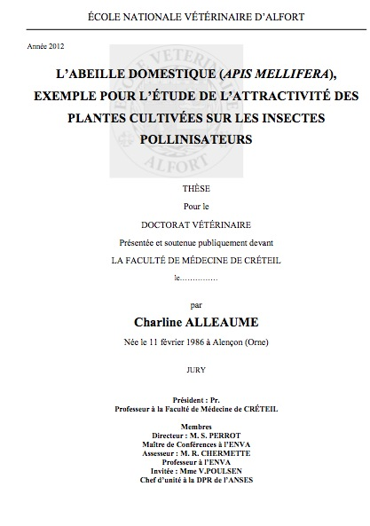 exemple de these doctorat